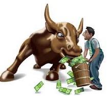 dollar bull